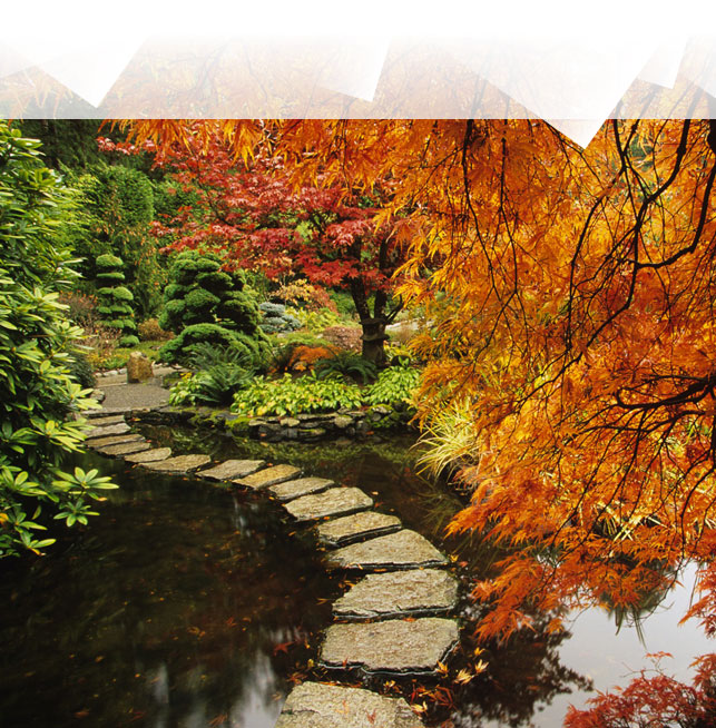 Favorito Foliage: weekend d'autunno tra i boschi - Style.it ZG82