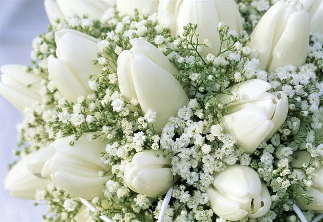 Fiori Bianchi Immagini E Nomi.Il Bouquet Da Sposa La Gypsophila E Protagonista Style It