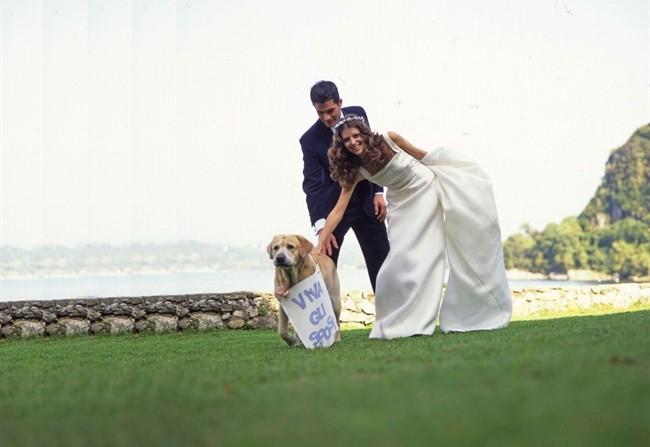 Matrimonio Uomo Cane : L ultima moda a nozze con fido style